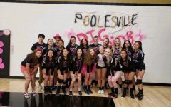 The PHS girls' volleyball team poses before their annual Dig Pink game.