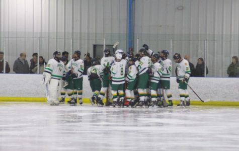 The hockey team celebrates at the end of the game.