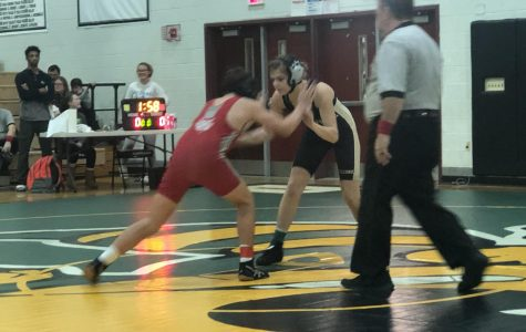 Wrestling team reinvigorated by new members