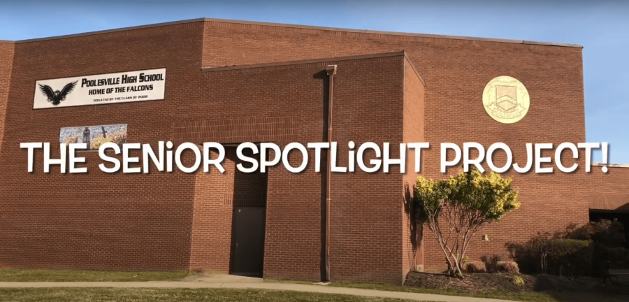 Senior Spotlight Week 3